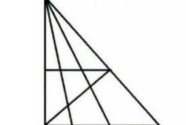 Svi na Internetu broje trokute: 'Ako ih vidite više od 18 IQ vam je iznad 120'